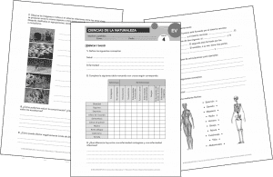 Evaluaciones propuestas 'APRENDER ES CRECER' (ANAYA) [CCNN5]