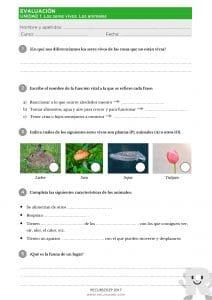 Propuesta de Evaluación – ANAYA – CCNN3 U1